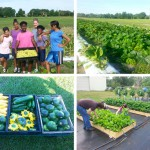 Javier Garces: Growing Community Partnerships in Horticulture — Faculty Highlight