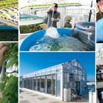 Rooftop Greenhouse Provides Valencia Plant Science Students with Aquaponics Experience